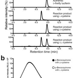 enantioselective formation of firefly luciferin from p benzoquinone and d cysteine or l cysteine a chiral hplc analysis of the reaction products formed  [ 840 x 1293 Pixel ]