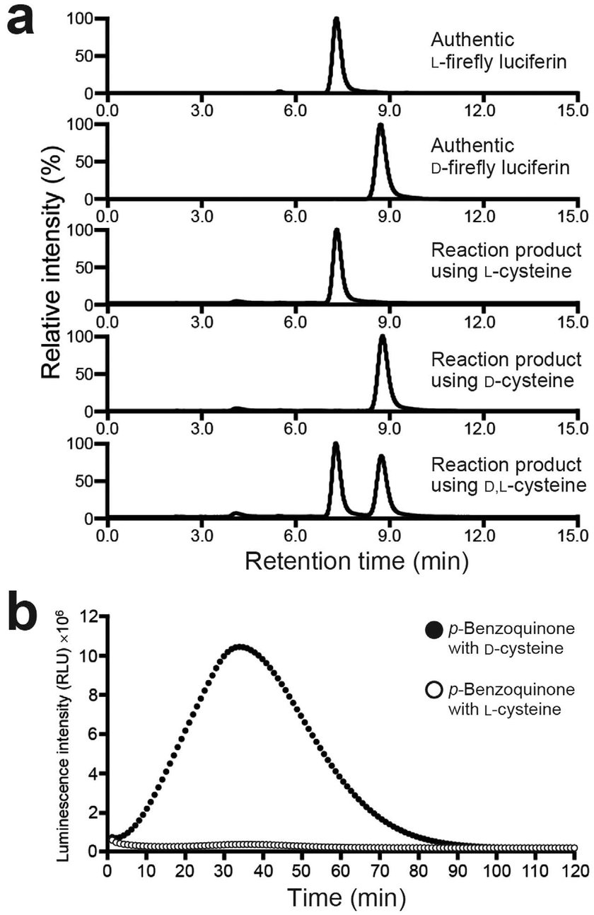 medium resolution of enantioselective formation of firefly luciferin from p benzoquinone and d cysteine or l cysteine a chiral hplc analysis of the reaction products formed