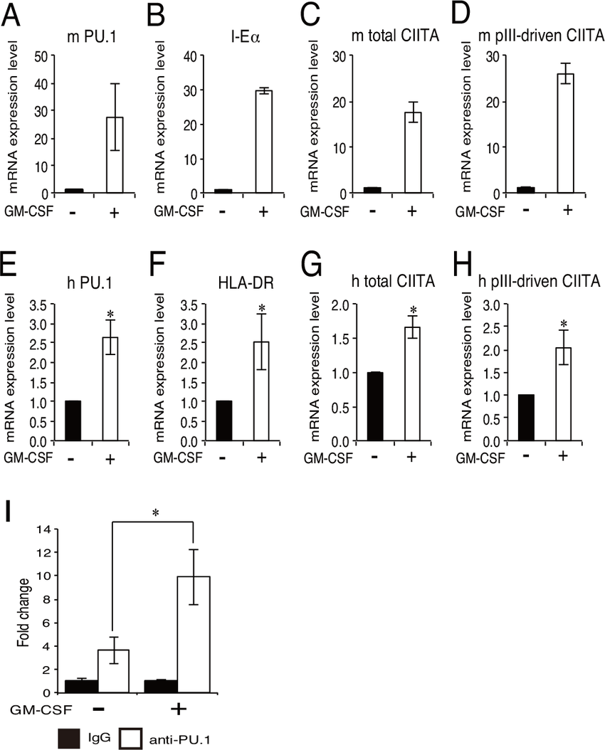 Effect of GM-CSF stimulation on the expression of PU.1