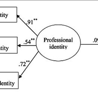 (PDF) Chinese Preservice Teachers' Professional Identity