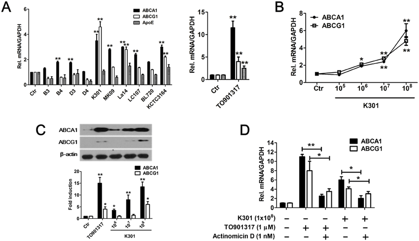 Effects of heat-killed lactic acid bacteria on LXR-related