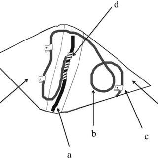 Schematic diagram of vagus nerve stimulation electrode