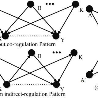 (PDF) Inferring Gene Regulatory Networks Using Conditional