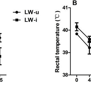 Pathological changes in lung tissue after PCV2 infection