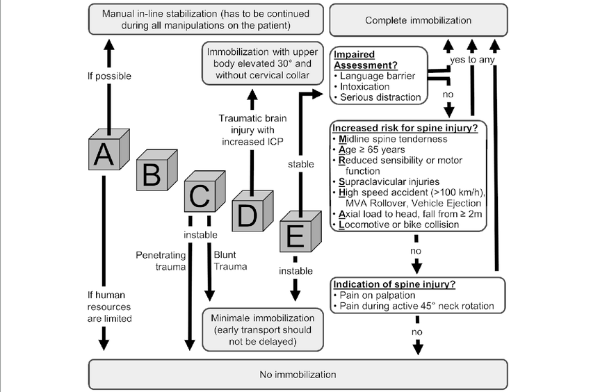 E.M.S. IMMO Protocol for adult trauma patients. The ABCDE
