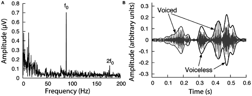 | Response of the auditory brainstem to continuous