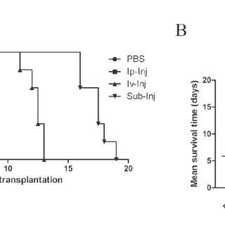 Cell signaling pathways of Tregs. TGF-β = transforming