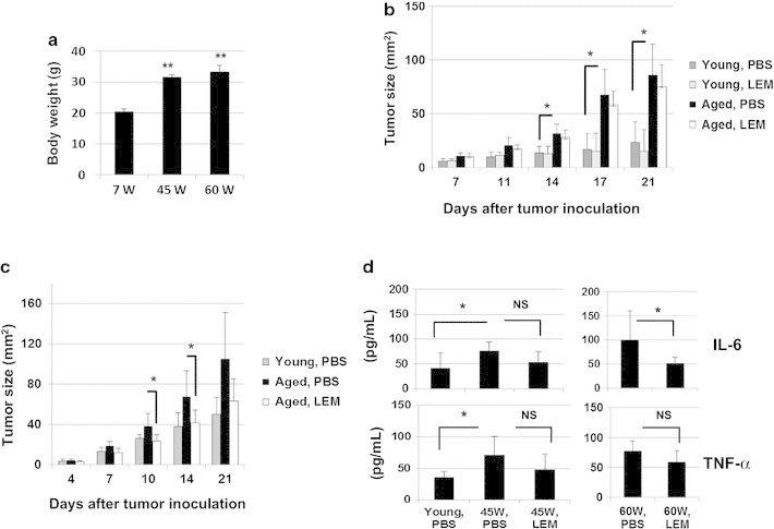 Effect of oral administration of L.E.M. extract on CT26