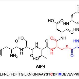 Lanthionine bond formation. A) Nisin and its precursor