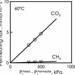 (PDF) CO2/CH4 separation by means of Matrimid hollow fibre