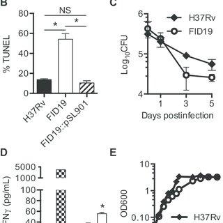 (PDF) Inhibition of apoptosis by Rv2456c through Nuclear