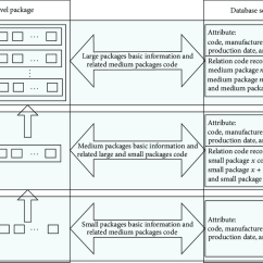 Relationship Code Diagram Koala Food Web The Mapping Between Multilevel Package And Database Server