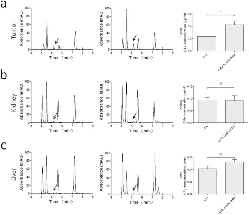 HPLC analysis of 5-FU in different organs.: After