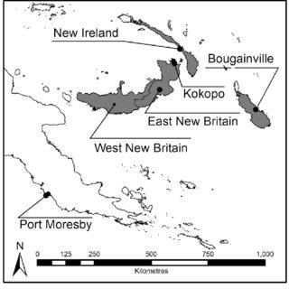 (PDF) Spatialising the Melanesian Canarium industry