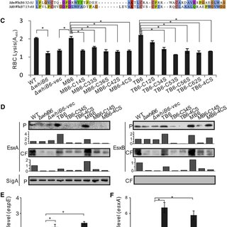 (PDF) Mycobacterial WhiB6 Differentially Regulates ESX-1