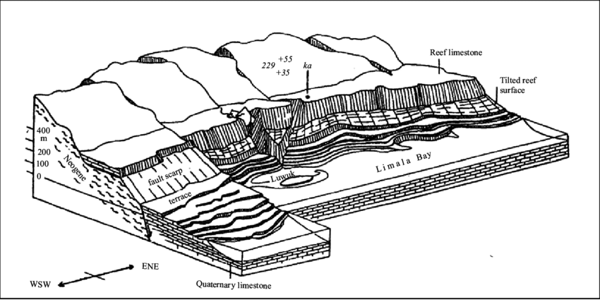 Block diagram of the raised reefs near Luwuk, East