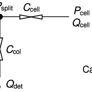 Flow diagrams shown in sampling/analysis mode for (a