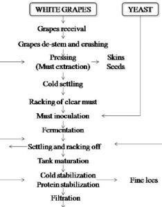 Flow diagram of white wine making process also download scientific rh researchgate