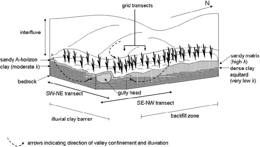 Schematic of conceptual model for clay-plug development in