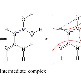 Simple Evolution Diagram Evolution Of The Wiring Diagram