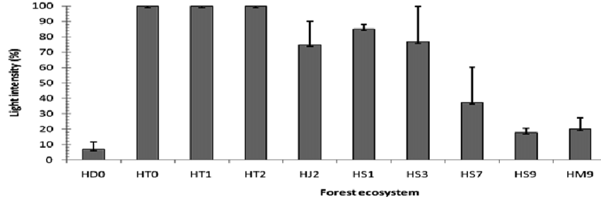 Light intensity (%) on the forest floor in various