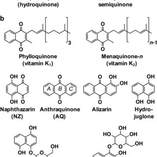 (PDF) Biosynthesis and molecular actions of specialized 1