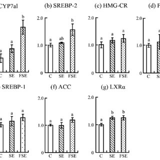 Expression of lipid metabolism-related genes in the livers