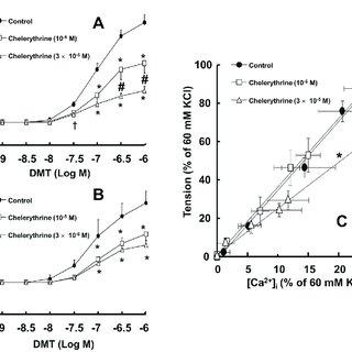 (PDF) Dexmedetomidine-Induced Contraction Involves CPI-17