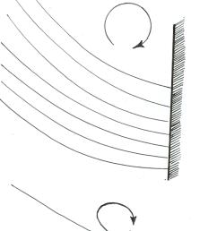 a variety of flagellar beating patterns a breaststroke of the biflagellate chlamydomonas  [ 850 x 1841 Pixel ]