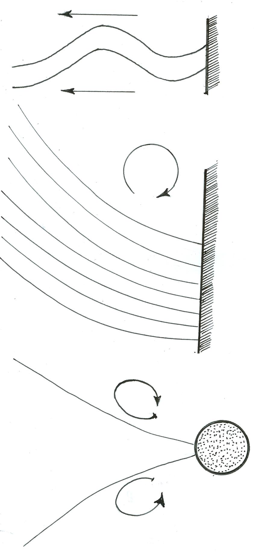 medium resolution of a variety of flagellar beating patterns a breaststroke of the biflagellate chlamydomonas