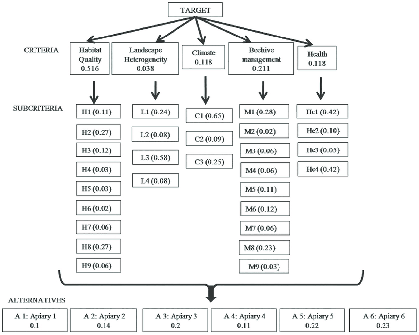 Analytic hierarchy process (AHP) to evaluate six apiaries