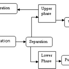 General biodiesel production process of enzyme