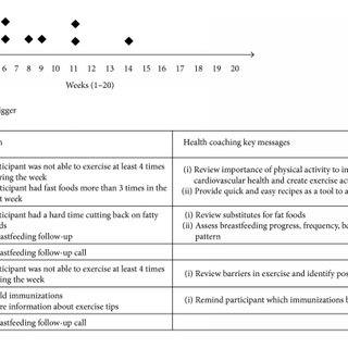 (PDF) Linking High Risk Postpartum Women with a Technology