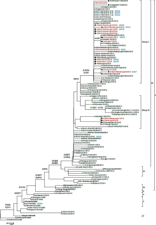 medium resolution of the phylogenetic tree of hemagglutinin protein of influenza download scientific diagram