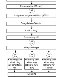 flow chart of processing of mozzarella cheeses made from goat milk  [ 740 x 1259 Pixel ]