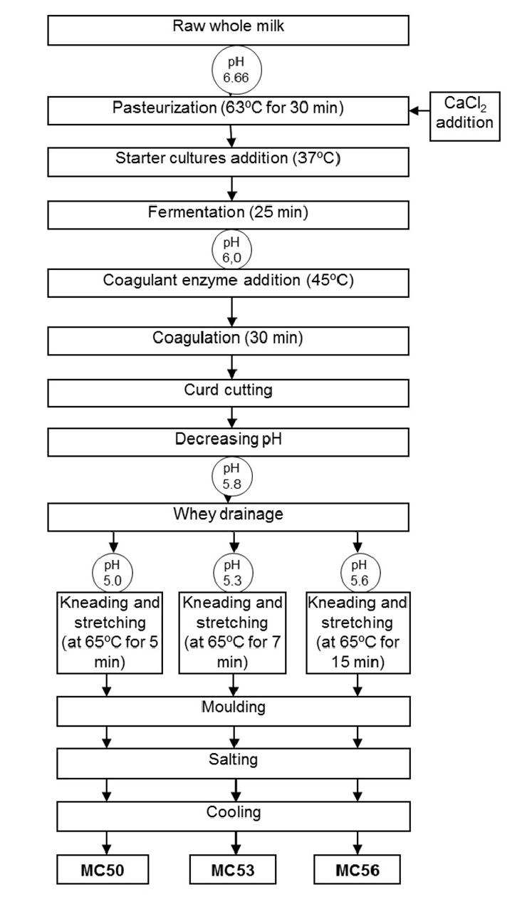 medium resolution of flow chart of processing of mozzarella cheeses made from goat milk
