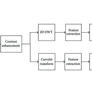 Block Diagram of the System C. QRS Detection using Wavelet