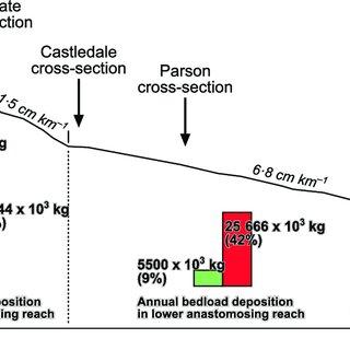 Schematic block diagram of an anastomosing river in a