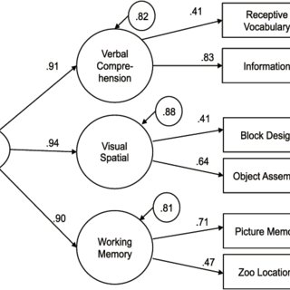 (PDF) A Study on the Structure of Intelligence Measured by