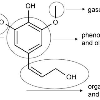 Flow diagram of the experimental setup. 1) Biomass storage