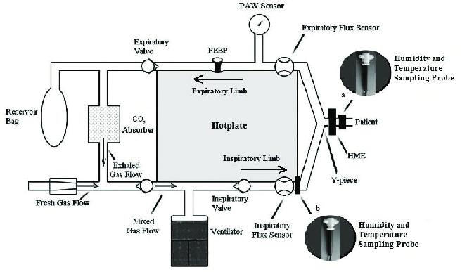 A diagram of the Fabius GS Premium breathing circuit. The
