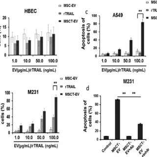 (PDF) TRAIL delivery by MSC-derived extracellular vesicles