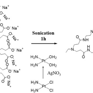Schematic presentation of drug-loaded PAMAM-Pluronic F127