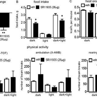 (PDF) Pharmacological Inhibition of c-Jun N-terminal
