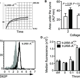 trJAM-A deficiency increases platelet adhesion after