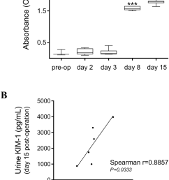 mouse anti haat antibody formation and its correlation with urine levels of kim 1 [ 850 x 1217 Pixel ]