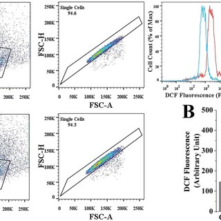 PQ-Induced change in CD4/CD8 count in murine splenocytes