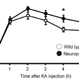 Effects of ethanol intake and ANA-12 on hippocampal brain