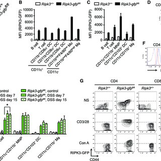 (PDF) Distinct Kinase-Independent Role of RIPK3 in CD11c