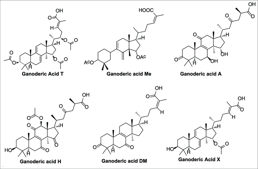 Chemical structure of different isoforms of ganoderic acid